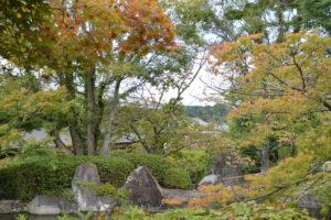子規の庭の風景1