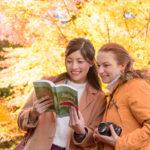 奈良に訪れる外国人観光客